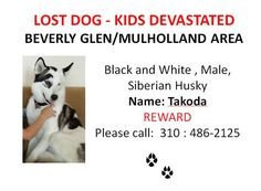 PLEASE HELP IF YOU ARE IN THE STUDIO CITY AREA!