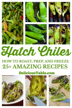 Amazing New Mexico Hatch Chile Recipes and How To Roast, Prep, and Freeze them at home. Hatch Chile season tips for roasting events near you, and more. New Mexico Green Chili Recipe, Hatch Green Chili Recipe, Green Chili Recipes, Hatch Chili, Mexican Food Recipes, Vegetarian Recipes, Healthy Recipes, Fun Easy Recipes, Side Dish Recipes