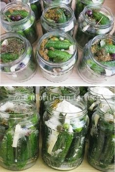 » Castraveti bulgarestiCulorile din Farfurie Pickling Cucumbers, Winter Time, Conservation, Preserves, Food Art, Pickles, Quinoa, Baking Soda, Food And Drink
