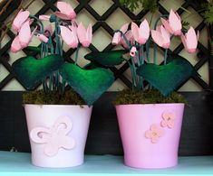 Cyclamen tutorial from egg box