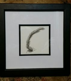 Zentangle glee chicken feather pen and ink. Relaxing Art, Zentangles, Glee, Art Forms, Feather, Ink, Chicken, Frame, Home Decor