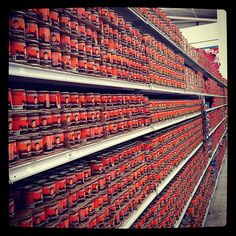 Whole aisle of grocery devoted to chili peppers. Railroad Tracks, Chili, Stairs, Stuffed Peppers, Instagram, Oaxaca, Stairway, Chile, Stuffed Pepper