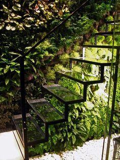 A glass staircase and living wall in Patrick Veillets Paris studio. Designed by Vertical Gardens Patrick Blanc.