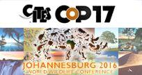 Um novo acordo com peso de lei internacional a partir de 2020 e a extensão do Protocolo de Kyoto até, pelo menos 2017. Estes foram os principais resultados da 17ª Conferência das Partes das Nações Unidas sobre o Clima (COP-17), iniciada em 28 de novembro e encerrada no domingo, 11 de dezembro, em Durban, na África do Sul, onde negociadores, ministros e representantes da sociedade civil de 193 países estiveram reunidos.