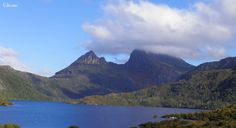 ✣ Cradle Mountain - Tasmania ✣  Photograph © Ellen Vaman www.facebook.com/ellen.vaman1 #EllenVaman #Photography #CradleMountain #Nature #Tasmania #Wilderness #Beauty