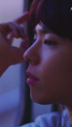 박보검 만다리나덕 여행 영상2 180102 [ 출처 : 막찜 ]