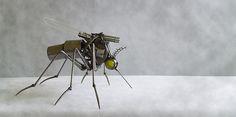 Mosquito  www.vitanovsky.com
