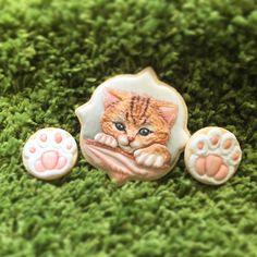 #handpaintedcookies #icing #icingcookies #cookies #cookieart #decoratedcookies #handpainted #catcookies #cat #cookieclass