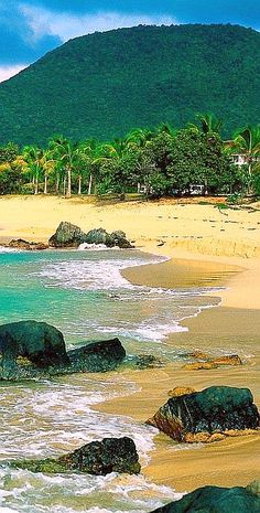 ✯ Tenerife, Canary Islands / 7 Spanish Islands located in the Atlantic Ocean off the Coast of Africa #travel