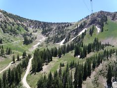 Took the tram up to the top of Hidden Peak with a picnic lunch and plans to hike back down the mountain.