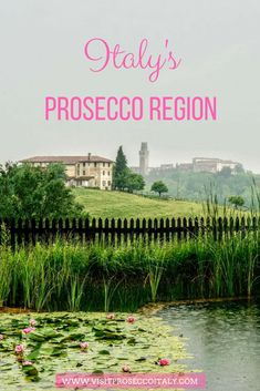 Did you know Italy's Prosecco region is one one hour from Venice making it the perfect day trip from Venice...or why not stay for a few nights. You can take a wine tasting tour from Venice and get to know Italy's under-discovered Prosecco region. This is the beautiful agritourismo of Borgoluce. Italy Honeymoon, Italy Vacation, Day Trips From Venice, Wine Safari, Wine Searcher, Wine Gift Baskets, Italy Travel Tips, Regions Of Italy, Beautiful Places To Travel