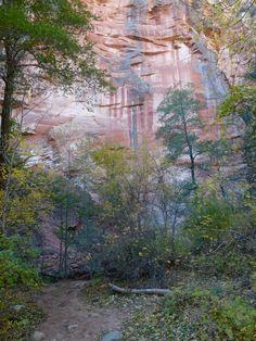 Hike in Sedona AZ - West Fork Trail