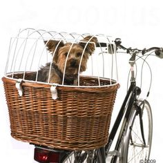 Rear dog basket. This won't work for us, but it's cool.