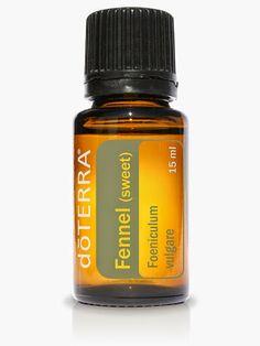 DoTERRA Global: Fennel Essential Oil [ www.OilsNetwork.com ] #OilsNetwork #health  #essentialoils #fennel