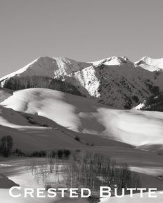 Crested Butte Colorado...203 inches total.  Undisturbed .