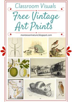 Free Vintage Art Prints - Classroom Visuals. | Montessori Nature