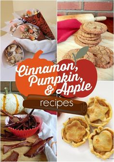 A collection of fall recipes using cinnamon, pumpkin, and apple. Something for everyone with over 30 ideas for the season.