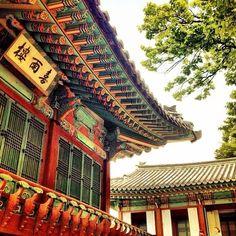 창덕궁 (昌德宮, Changdeokgung Palace)- South Korea