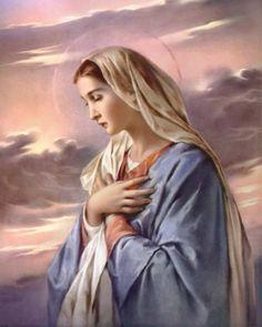 Salve Regina, Madre di misericordia. Vita, dolcezza, speranza nostra, salve! Salve Regina! (2 v)  A te ricorriamo, esuli figli di Eva. A te sospiriamo, piangenti in questa valle di lacrime. Avvocata nostra, volgi a noi gli occhi tuoi. Mostraci, dopo quest'esilio, il frutto del tuo seno, Gesù.  Salve Regina, Madre di misericordia. O clemente, o pia, o dolce Vergine Maria. Salve Regina! Salve Regina, salve, salve!
