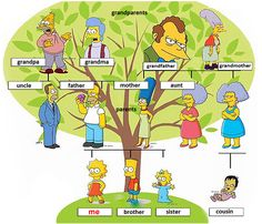 The family - English vocabulary