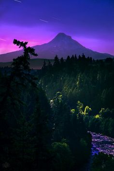 Beautifully purple!