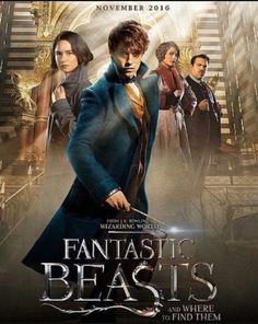 Fantastic Beasts 😍😍😍😍😍