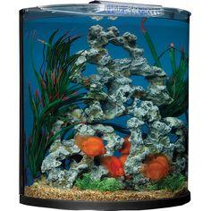 Half-Moon Aquarium Combo