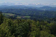 Der Schauenberg ist ein unterschätzter Aussichtspunkt im Kanton Zürich. Denn bei schönem Wetter oder gar Föhn, geniessen Sie einen ungeahnten Weitblick. Mit 892 m. ü. M ist er nicht hoch, der Schauenberg.