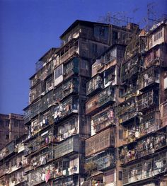 The wealthiest residents of Kowloon could afford apartments on the edge of the city and have access to sunlight. Kowloon Hong Kong, Kowloon Walled City, Photo Dump, Dark City, Slums, The Real World, Abandoned Places, Architecture, City Photo