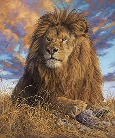 DIY Oil Painting By Numbers Kit Animals Lion Painting On Canvas Home Decoration Home Wall Art Picture Artwork Animal Paintings, Animal Drawings, Lion Painting, Painting Abstract, Lion Of Judah, Lion Art, Wall Art Pictures, Eye Art, Wildlife Art