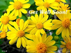 Get Well Soon! Love, hugs and healing prayers. Get Well Prayers, Get Well Wishes, Get Well Soon Gifts, Lacey Green, Family Gift Baskets, Missionary Care Packages, Boyfriend Care Package, Birthday Care Packages, Get Well Quotes