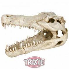 Cráneo cocodrilo, 8 cm RED SEA Kit test triator magnesio pro, #acuario #peces #agua #peceras #mascotas #animales #marinos #arrecife En www.theanimallshop.com
