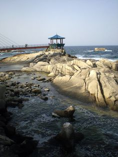 Dongmyeong-hang (Dongmyeong Port) : Yeonggeumjeong is a popular pavilion built on the shores of the East Sea. It is not only popular for its magnificent views of the sunrise, but also for the sound of the sea which is thought to be particularly nice at this site. It is thought that the pavilion was built at this location for sonic reasons. From Wikipedia