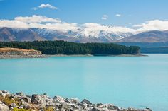 Lake Pukaki is one of the places I most want to visit in NZ! Top of the bucket list.