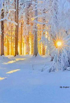 Winter im Sonnenschein