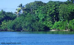 Lush Island in Belize. Read about the best and worst of Belize.