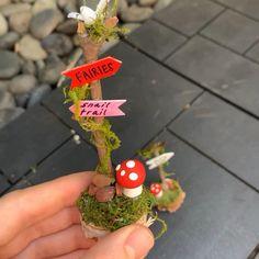 Indoor Fairy Gardens, Mini Fairy Garden, Fairy Garden Houses, Miniature Fairy Gardens, Fairies For Fairy Garden, Fairy House Crafts, Fairy Tree Houses, Fairy Garden Plants, Fairy Land