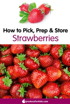 How to pick, prep, & store Strawberries