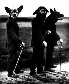 By August Sander November 1876 – 20 April a German portrait and documentary photographer. Photo modified from the original entitled: Young Farmers, Westerwald August Sander, Animal Masks, Animal Heads, Dark Fantasy, Creation Art, Weird And Wonderful, Art Plastique, Macabre, Pet Portraits