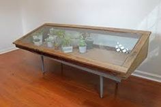 Image result for display case cabinets