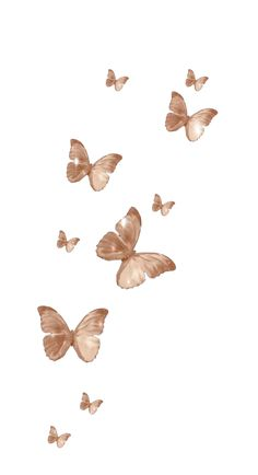 Butterfly Wallpaper Iphone, Iphone Background Wallpaper, Aesthetic Iphone Wallpaper, Aesthetic Wallpapers, Vintage Sticker, Brown Aesthetic, Aesthetic Vintage, Applis Photo, Cute Patterns Wallpaper