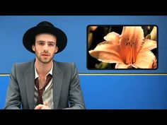 The Veils - Begin Again - YouTube. A different kind of nostalgia. Memories of July 2009, sitting outside with my brother and other fans behind Opolis, chatting with Finn and Sophia after an amazing show. This is the Finn we remember better.