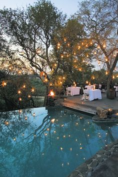 A swimming pool is one of the popular water features that many homeowners choose to beautify their houses. Choosing a swimming pool as a part of the home will never. Landscape Lighting, Outdoor Lighting, Backyard Lighting, Exterior Lighting, Outside Lighting Ideas, Outdoor Fairy Lights, Wedding Lighting, Outdoor Spaces, Indoor Outdoor