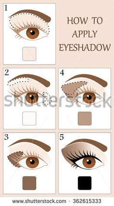 Make up tutorial set - stages of applying beige shadow on brown women eye with brow and lashes. eyeshadow apply step by step. makeup concept, vector art image illustration isolated on white background Contour Makeup, Eyeshadow Makeup, Beauty Makeup, Brown Skin Makeup, Natural Eye Makeup, Eye Makeup Steps, Smokey Eye Makeup, Eye Makeup Pictures, Makeup Order
