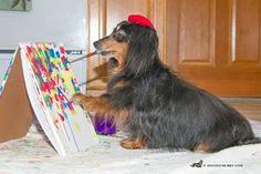Wiener dog artist at work
