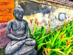 Join us in Ubud for yoga and life coaching retreat: http://yogainbali.under30experiences.com/ #yoga #yogaeverydamnday #bali #yogaretreat #lifecoaching