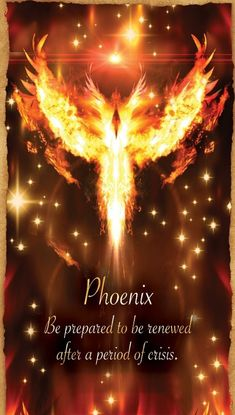 Success Quotes : Fortune Reading Cards Phoenix by Mo. Phoenix Quotes, Phoenix Images, Phoenix Artwork, Madara Wallpaper, Fortune Reading, Phoenix Rising, Rise Of The Phoenix, Angel Cards, Inspirational Quotes