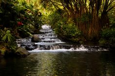 Tabacon main Waterfalls by Etienne Tremblay#Repin By:Pinterest++ for iPad#