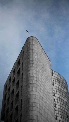 """""""wings"""" Skyscraper, Multi Story Building, Wings, Architecture, Arquitetura, Skyscrapers, Feathers, Architecture Design, Feather"""