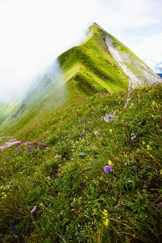 G Adventures, Trail Running, Nature Photos, Switzerland, Fields, Golf Courses, Things To Do, Beautiful Places, Germany